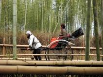 04-19 Kyoto - Sagano Bamboo Grove (1024x768)
