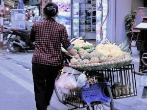 01-10 Hanoi